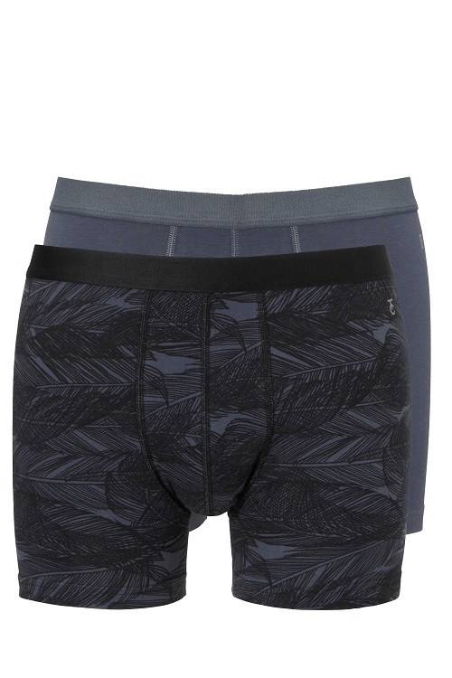 Ten Cate heren boxershorts 2-pack Antra print