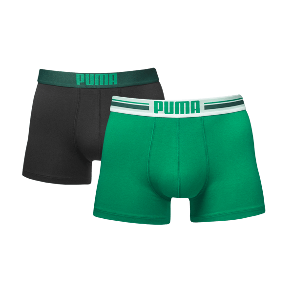 Puma PLACED LOGO Green-L